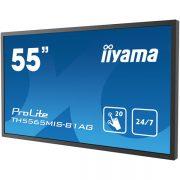 iiyama55-true